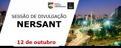 Sessão de divulgação do Projeto Portugal Connect – NERSANT